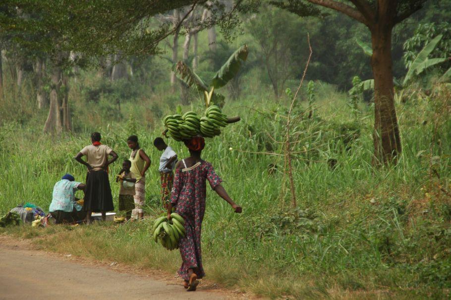 Benin lumiere population