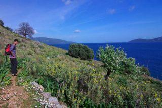 Grèce Ioniennes : la patrie d'Ulysse