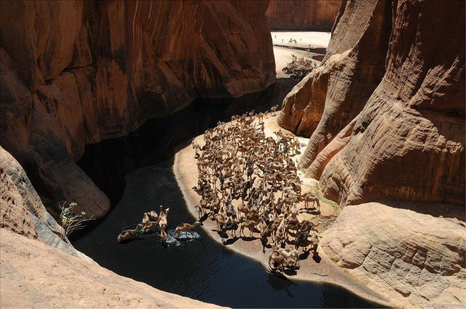 Guelta d'Archei.jpg