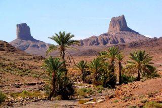Maroc Djebel Sargho