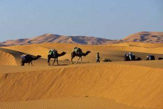 Maroc Dunes dorées de Merzouga