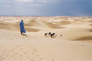 Mauritanie ©Droits réservés