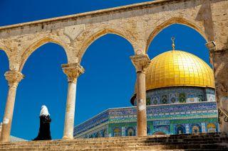 mieux comprendre palestine