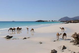 Oman Montagnes, dunes et océan.