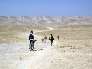 Palestine – Le Sentier d'Abraham en VTT ©Nicolas Eibner