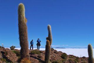 Pérou Des cités incas au désert de l'Altiplano.
