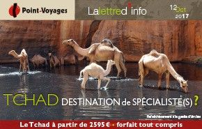 Point-voyages-baniere-tchad.jpg