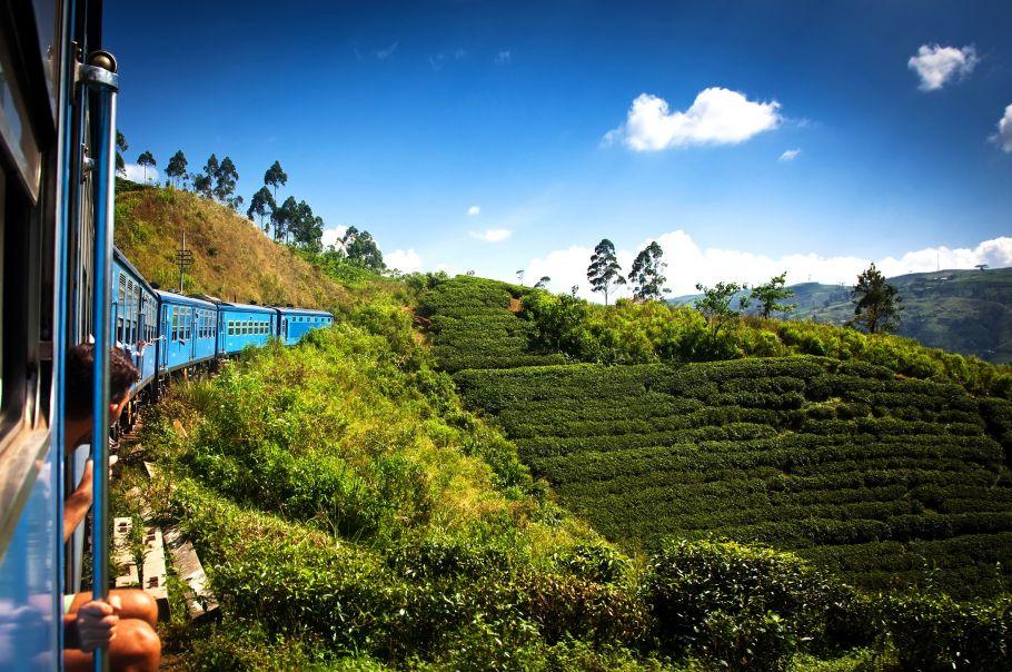 Train dans les plantations de Thé - Sri Lanka - ©Droits Réservés