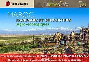 w-baniere-maroc-agroecologie-09-16.jpg