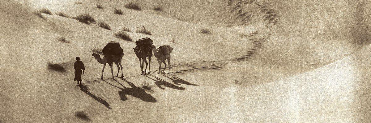 Caravane - Borkou - Tchad  © Norbert Sayou