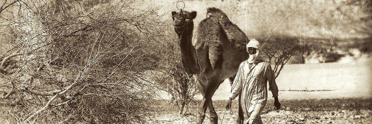 Nomade Toubou - Faya - Tchad  © Norbert Sayou