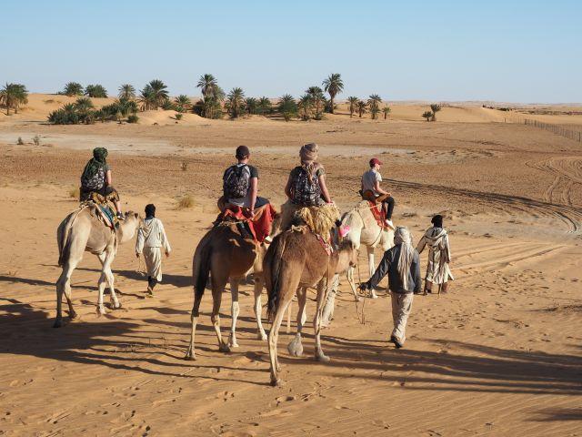 Mauritanie Dunes Oasis Et Chinguetti