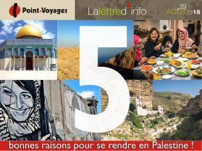 point-voyages-baniere-bonnes-raisons-partir-en-palestine-aout18.jpg