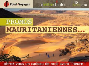 w-point-voyages-baniere-promo-mauritanie-novembre18.jpg